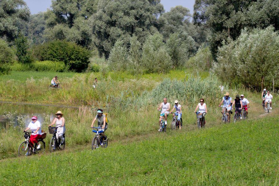 BuBa2 - Bajsom u Baranju  Foto: cacan  Ključne riječi: buba buba2 bicikl