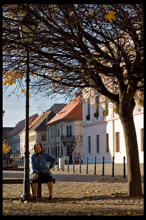 'ladovina  Foto: Samir Kurtagic  Ključne riječi: tvrdja drvo klupa baka jesen