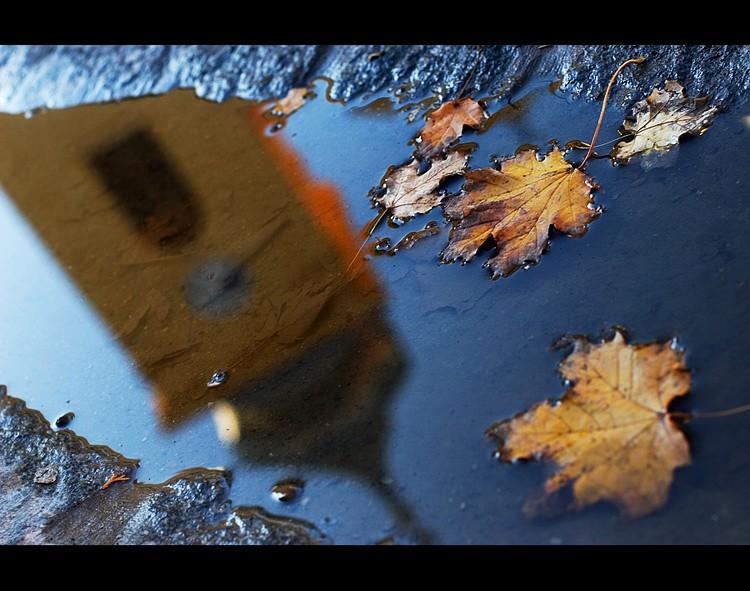 Jesenja Tvrđa  Foto: Samir Kurtagic  Ključne riječi: jesen lisce tvrdja kisa