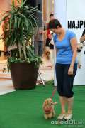 2012_06_30_avenue-mall-osijek_najpas_benc_16.jpg