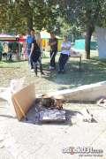 2012_10_04_pampas_jesenski_sajam_borna_235.jpg