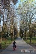 2013_04_16_proljece_u_gradu_spaic_078.jpg
