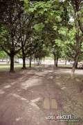 2013_05_08_zrinjevac_zeros_0042.jpg