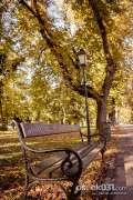 2013_10_18_jesen_u_gradu_zeros_0039.jpg