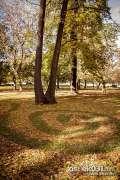 2013_10_18_jesen_u_gradu_zeros_0040.jpg