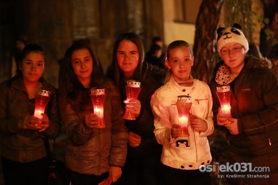 Vukovarska ulica - svijece za Vukovar 2013.