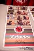 2013_12_09_promocija_kalendara_azil_europa_0009.jpg