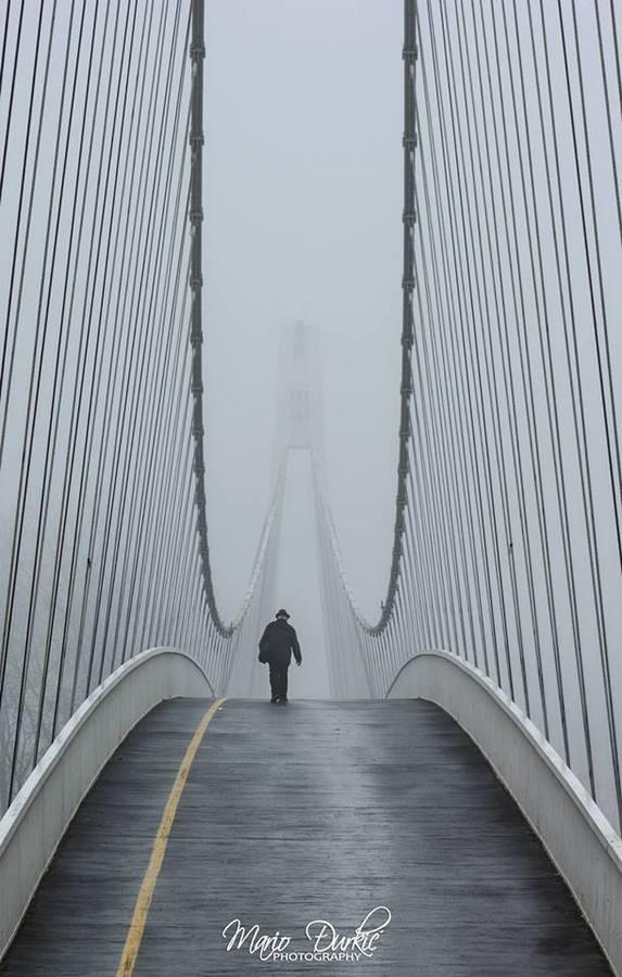 [url=http://www.osijek031.com/osijek.php?topic_id=48975][FOTO] Viseći pješački most u Osijeku - kroz objektiv građana[/url]  Foto: Mario Đurkić