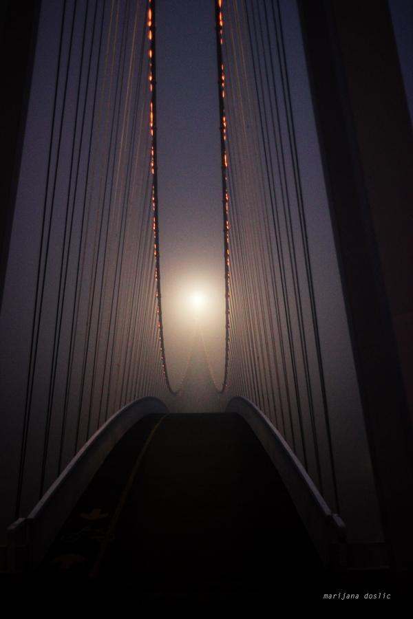 [url=http://www.osijek031.com/osijek.php?topic_id=48975][FOTO] Viseći pješački most u Osijeku - kroz objektiv građana[/url]  Foto: Marijana Došlić