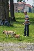 2015_05_31_povratak_otpisanih2_azil_psi_teuta_059.jpg