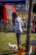 2015_09_12_slavonia_show_cacib_psi_teuta_024.jpg