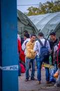 2015_09_21_tovarnik_lovas_izbjeglice_migranti_teuta_056.jpg