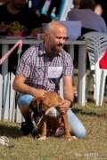 2019_09_14_kopika_cacib_borna_jaksic_010.JPG
