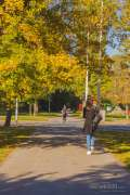 2020_10_22_jesen_u_gradu_nella_010.JPG