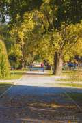 2020_10_22_jesen_u_gradu_nella_013.JPG