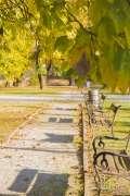 2020_10_22_jesen_u_gradu_nella_017.JPG