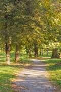 2020_10_22_jesen_u_gradu_nella_019.JPG