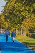 2020_10_22_jesen_u_gradu_nella_022.JPG