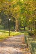 2020_10_22_jesen_u_gradu_nella_027.JPG