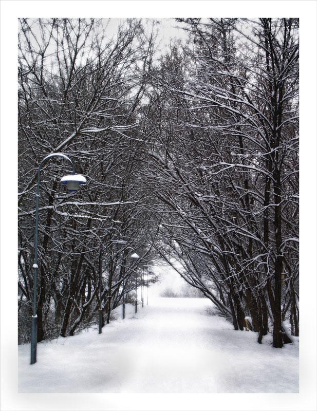 Plava lampa  Foto: Jasmina Gorjanski  Ključne riječi: park snijeg