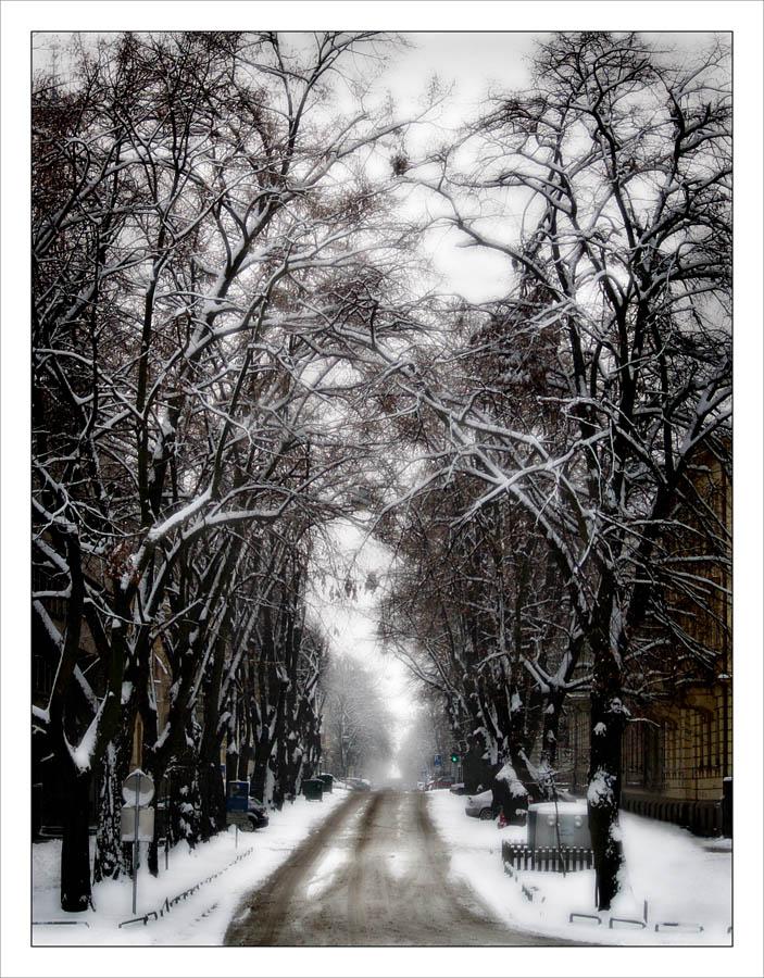 Snježna ulica  Foto: Jasmina Gorjanski  Ključne riječi: park snijeg