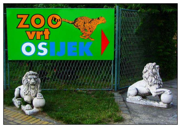 Dobrodošli   Photo: [url=http://www.osijek031.com/profile.php?mode=viewprofile&u=352]kcimer[/url] [url=http://compactmagic.blog385.com]compactmagic blog[/url]   Ključne riječi: osijek zoo