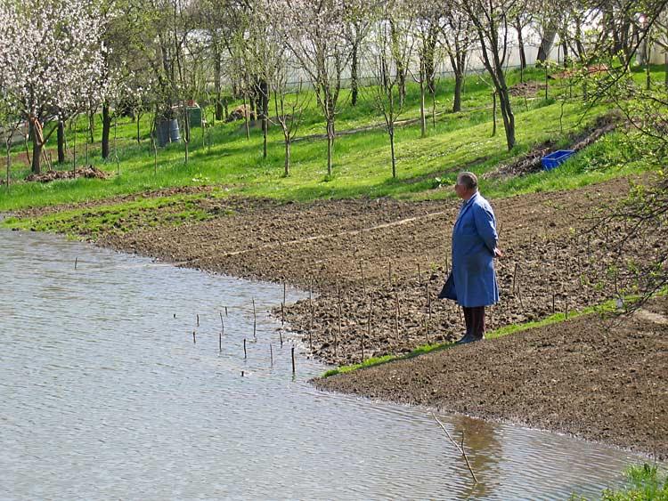 Zeleno polje  Photo: Steam  Ključne riječi: osijek poplava