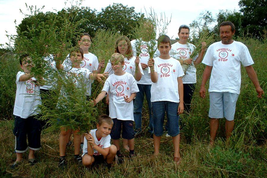 Ambrozija, STOP!  Akcija Ambrozija STOP!  provedena 23. kolovoza 2008. u Donjem Miholjcu.  Ambrozije ima jako mnogo. Ovo je bio samo mali pokušaj, male grupe volontera, ukloniti bar dio  rascvjetalih stabljika. Sve što je počupano završit će u kompostu. Uskoro, kad se formira sjeme, biljke više se  neće moći upotrijebiti za kompost.    Pogledajte oko sebe, uočite li stabljiku ambrozije - isčupajte ju s korijenom,  usitnite, kompostirajte ili malčirajte...  Ne dozvolite da se širi!  Foto & tekst: Mira  Ključne riječi: ambrozija