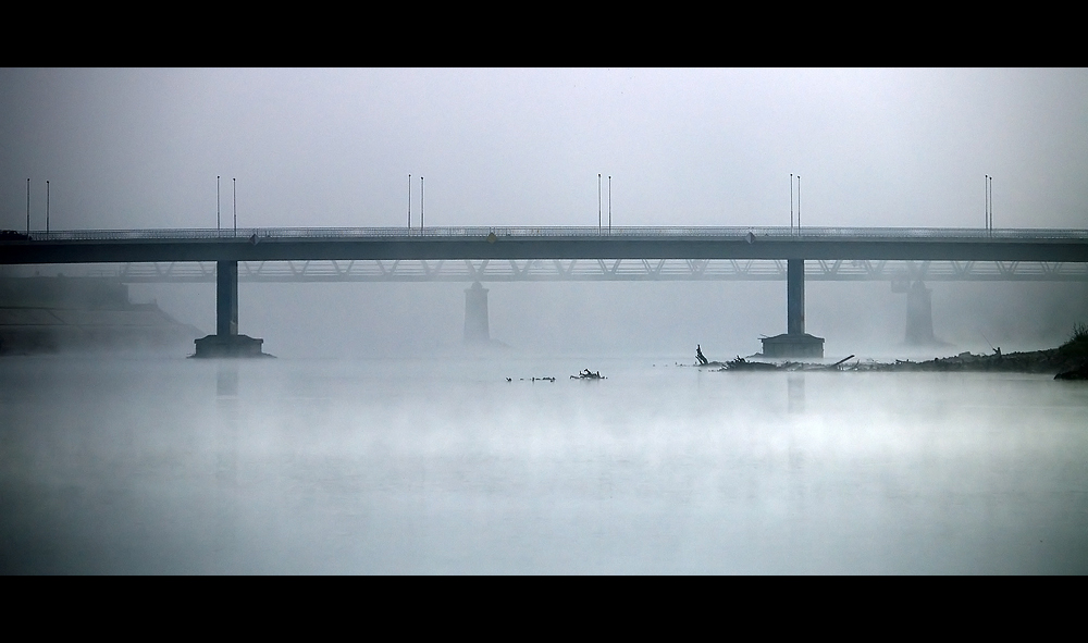 Ispod mosta  Foto: Jasmina Gorjanski  Ključne riječi: drava most magla