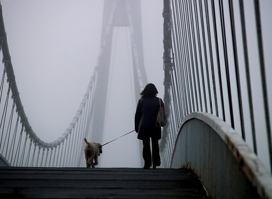 Prvi šetači  Foto: Jasmina Gorjanski  Ključne riječi: most magla šetači