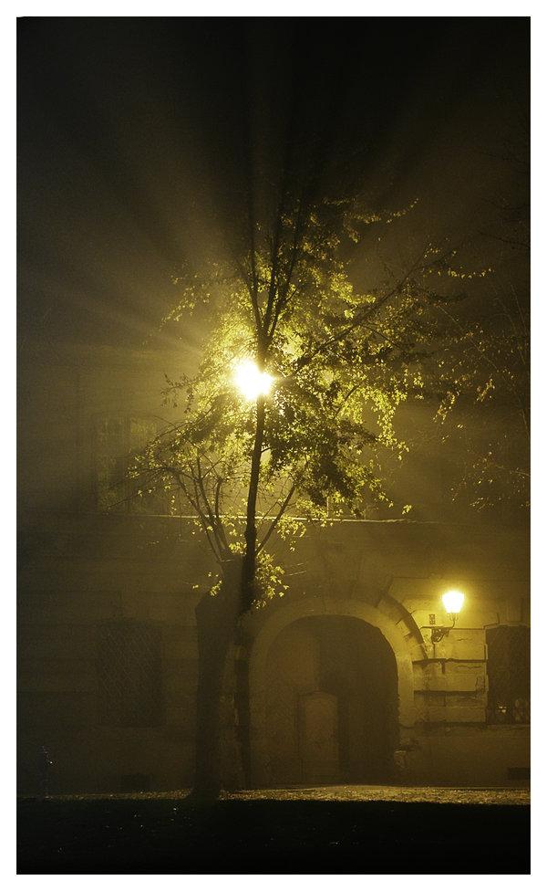 Kroz maglu  Osijek, Croatia, 2008.  Foto: [url=http://www.mojosijek.deviantart.com/]Domagoj Sajter[/url]  Ključne riječi: magla noc nocna tvrdja