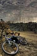 2006_11_23_lost_at_pampas_borissey.jpg
