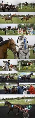 2008_09_13_dani_konjickog_sporta_kolaz_425.jpg