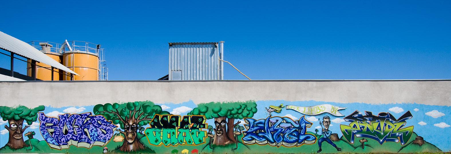 Grafit  Foto: steam  Ključne riječi: grafit drinska