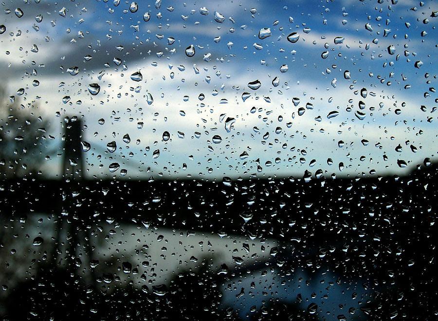 Kišni dan  Foto: Jasmina Gorjanski  Ključne riječi: kisa kapi