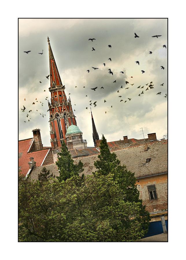 Pogled na grad  Foto: Tomislav Šilovinac  Ključne riječi: osijek katedrala