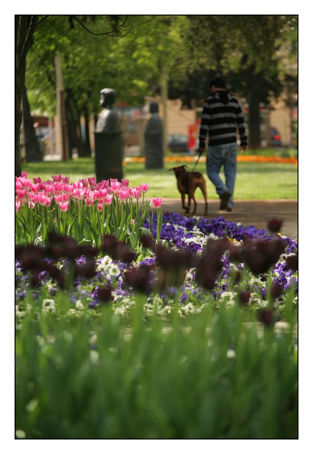 Proljetna šetnjica  foto: Sikki  Ključne riječi: osijek proljeće