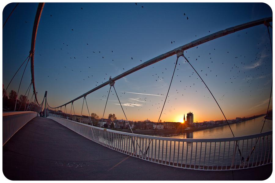 100 puta viđen, ali uvijek lijep zalazak  foto: Tomislav Šilovinac Šiki  Ključne riječi: osijek most