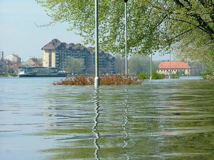 Kako do zoološkog?!  Photo: Circa031  Ključne riječi: poplava voda drava promenada