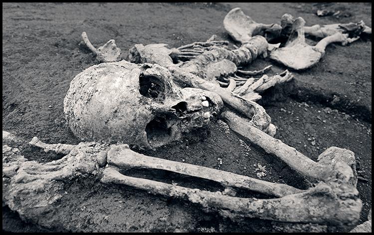 Mursa  Photo: Ivan Sekol  Ključne riječi: ivan sekol mursa osijek kostur dgo arheologija