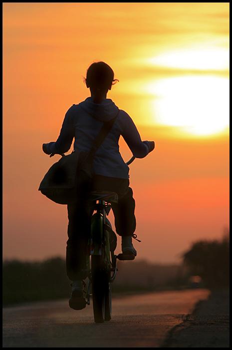 Dusk ride  Photo: Ivan Sekol  Snimljeno prilikom bicikletanja Kopačkim...  Ključne riječi: ivan sekol bicikl kopački rit zalazak