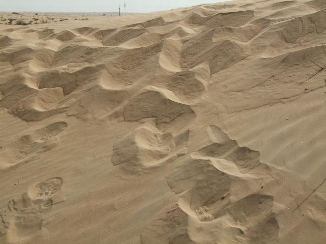 Pustinja 3