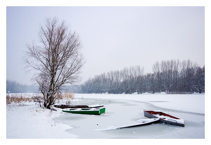 Frozen  Photo: Davor Pleša [url=http://davorplesa.com]http://davorplesa.com[/url]  Ključne riječi: frozen zima camac led davor