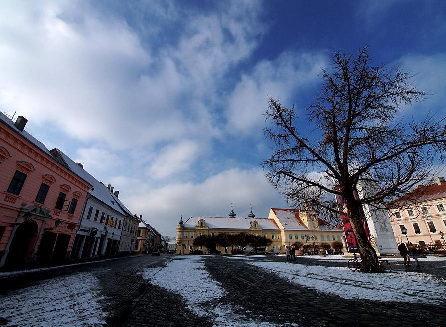 Na trgu  Foto: Jasmina Gorjanski  Ključne riječi: trg tvrdja zima snijeg
