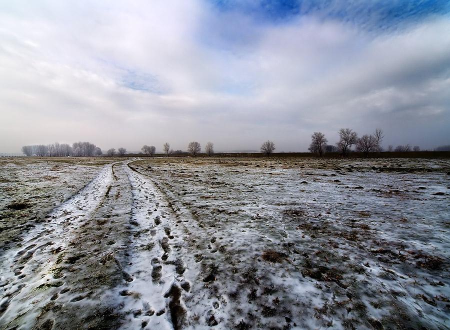 Slavonski puti   Foto: Jasmina Gorjanski   Ključne riječi: slavonski puti zima snijeg polje