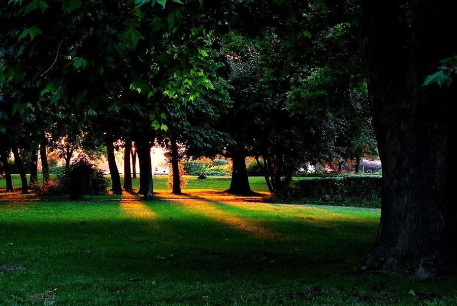 Park i sunce  Foto: Vedran Ayami Janić  Ključne riječi: park sunce