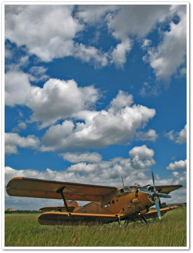 U polju  Foto: [b]Igor Sekulić[/b]  Ključne riječi: polje zrakoplov