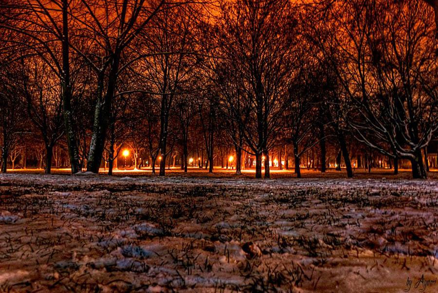 Zimski ugođaj  Foto: [b]Vedran Ayami Janić[/b]  Ključne riječi: zima snijeg park