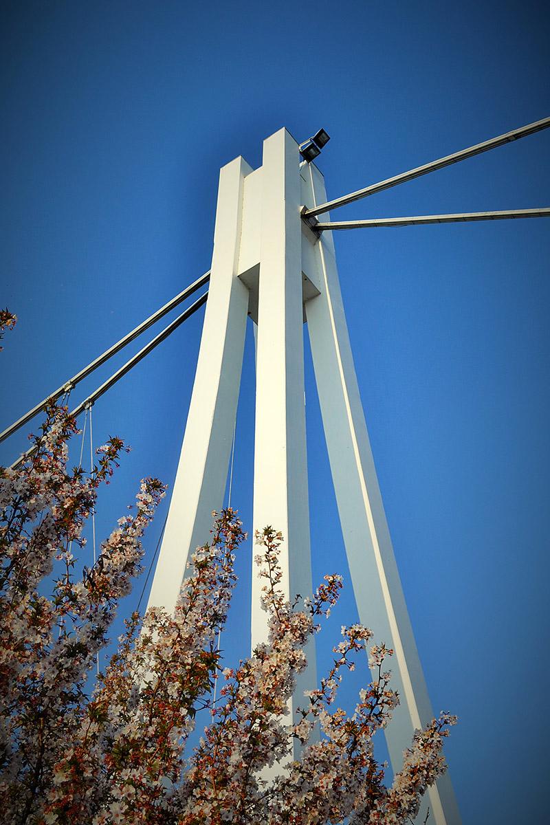Osječki most  Foto: Daria Smajić  Ključne riječi: Most Nebo Priroda