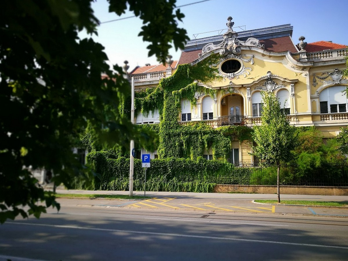 Europska avenija  Foto: Ivan Krešić  Ključne riječi: Avenija Zelenilo Priroda grad Ulica Gradevina